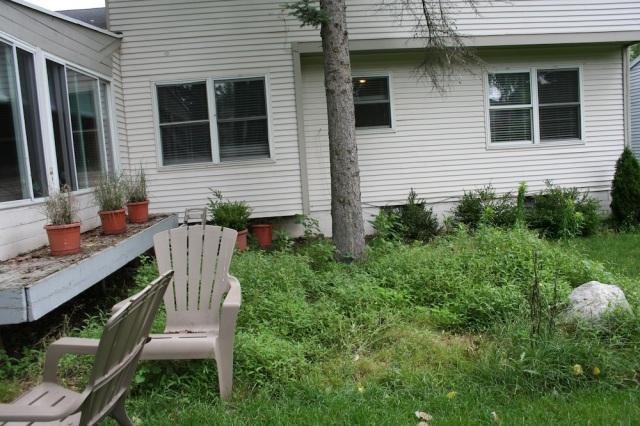 Sideyard 2