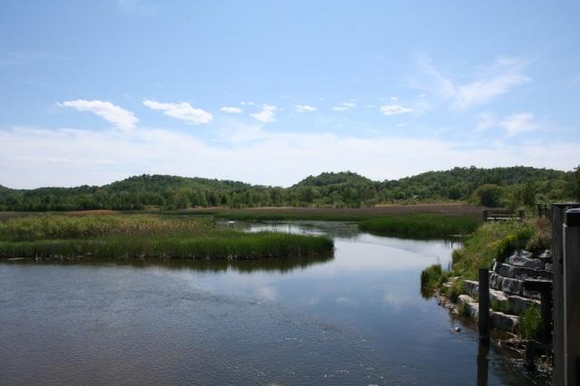 View from Betsie Trail Bridge