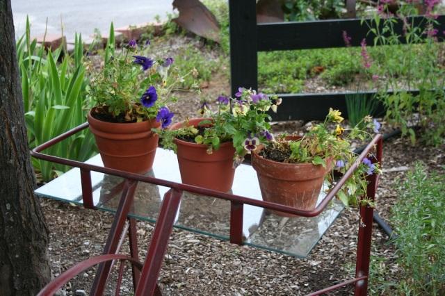 Tc blackstar flower pots