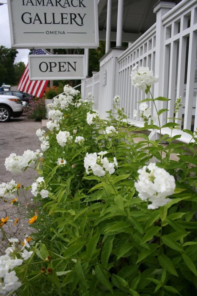 tc tamarack flowers