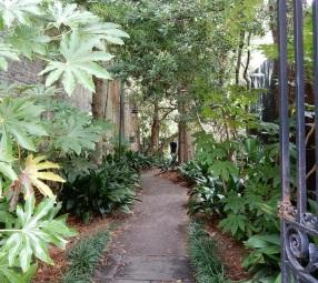 Downtown_Garden