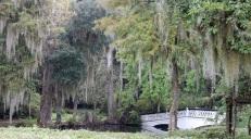 Magnolia_Bridge